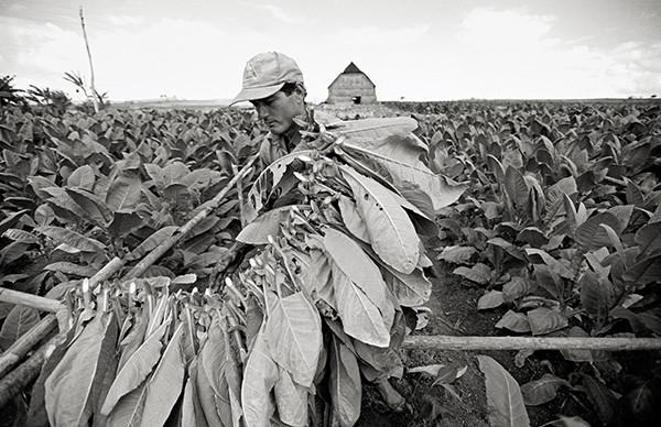 Manuel Rivera-Ortiz Cuba Finding Home