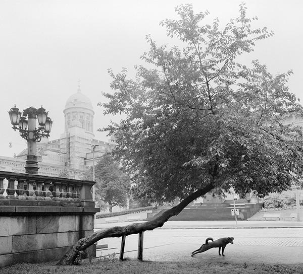 Pentti Sammallahti Hier weit entfernt Fotografien 1964 – 2011