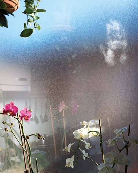 Jessica Backhaus What Still Remains