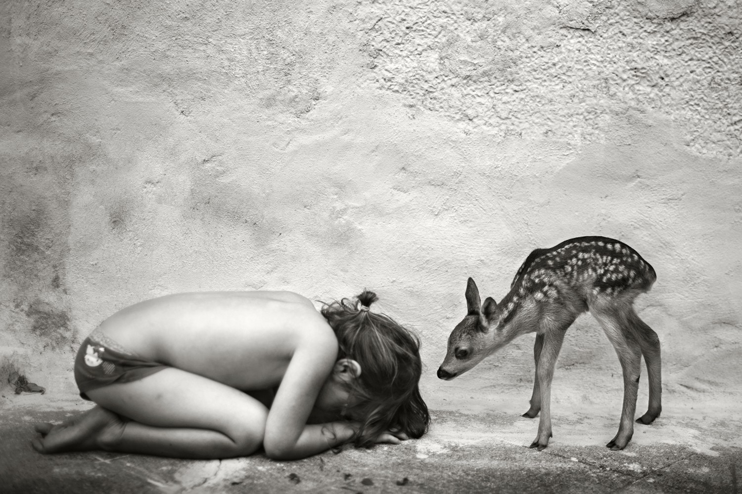 Alain Laboile COLLECTOR'S EDITION: Summer of the Fawn Motif »Lili« (2013)