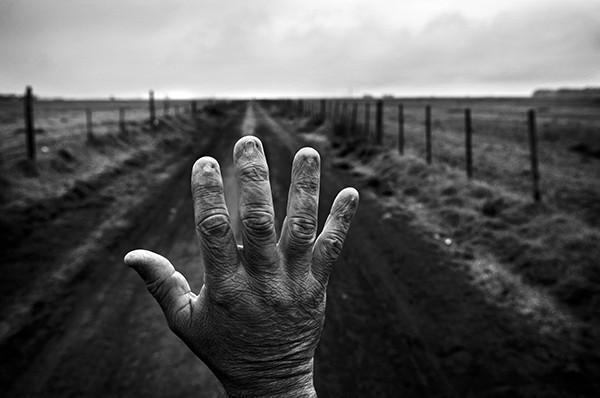Pablo E. Piovano SIGNED: The Human Cost of Agrotoxins El Costo Humano de los Agrotóxicos