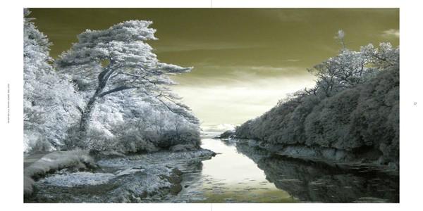 Ulrike Crespo Cold Landscape