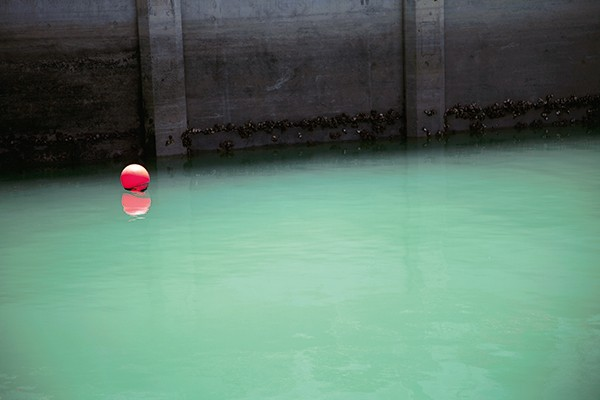 Jessica Backhaus Once, Still and Forever Signierte limitierte 2. Auflage
