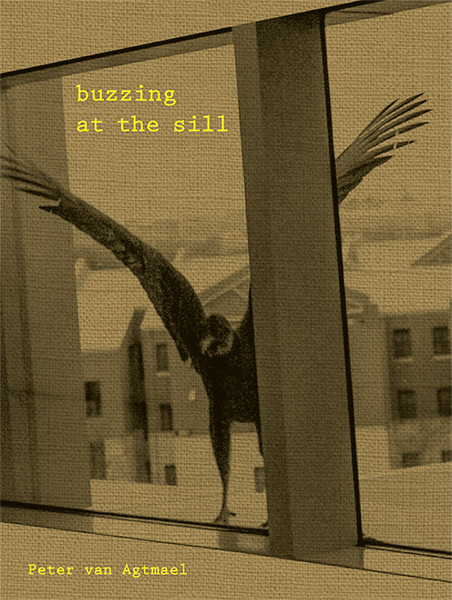 Peter van Agtmael Buzzing at the Sill
