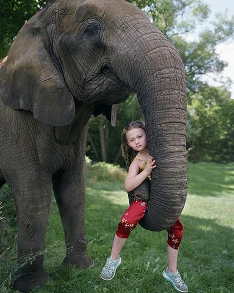 Robin Schwartz Amelia und die Tiere