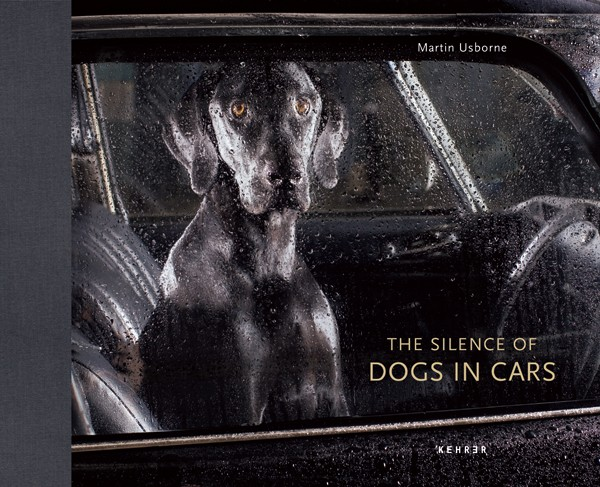 Martin Usborne The Silence of Dogs in Cars